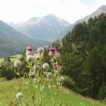 Heilpraktiker-Kreuer-Berge