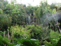 Heilpraktiker-Kreuer-Wasserfall