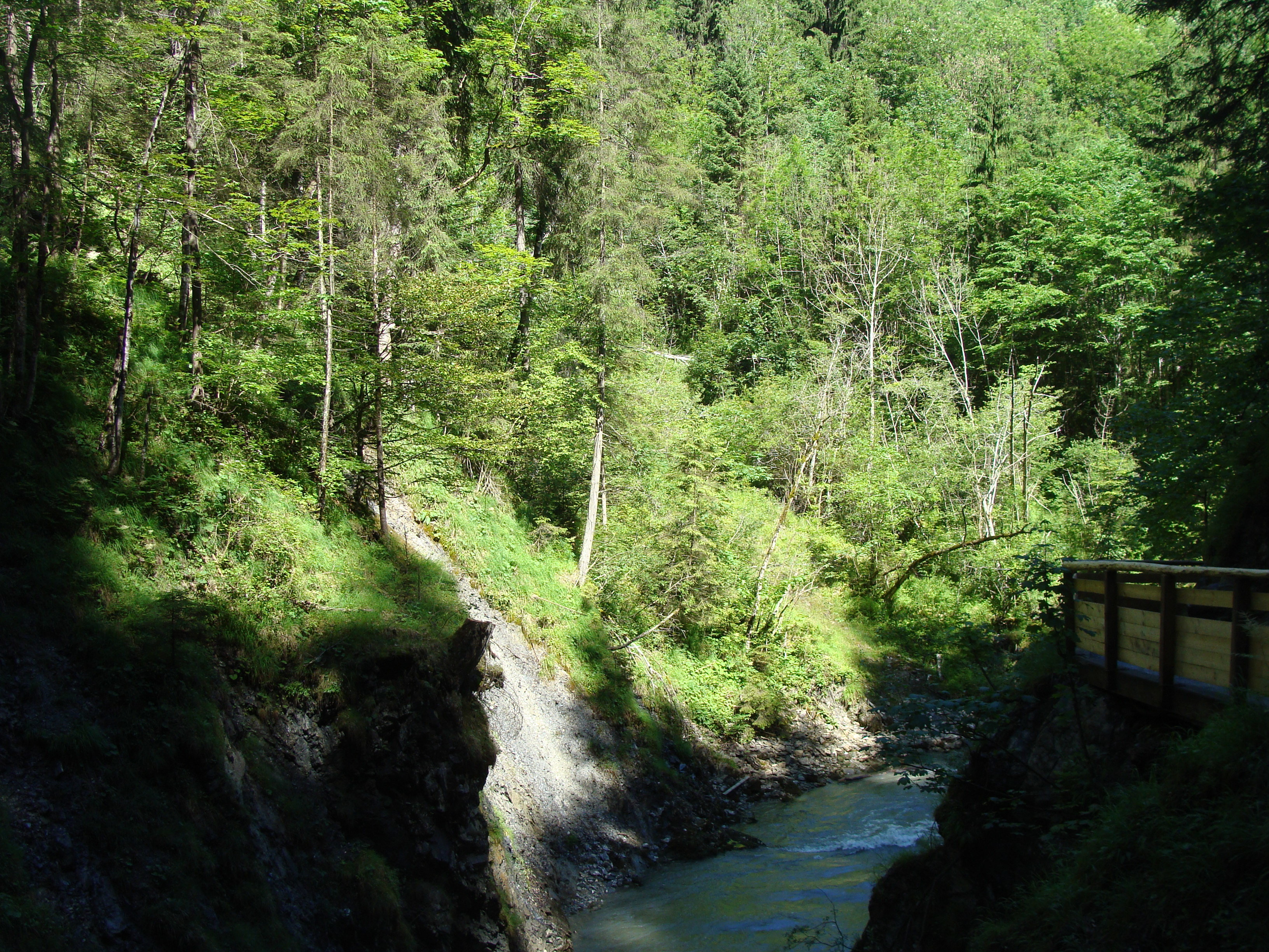 Bioresonanztherapie Wernau Waiblingen 57