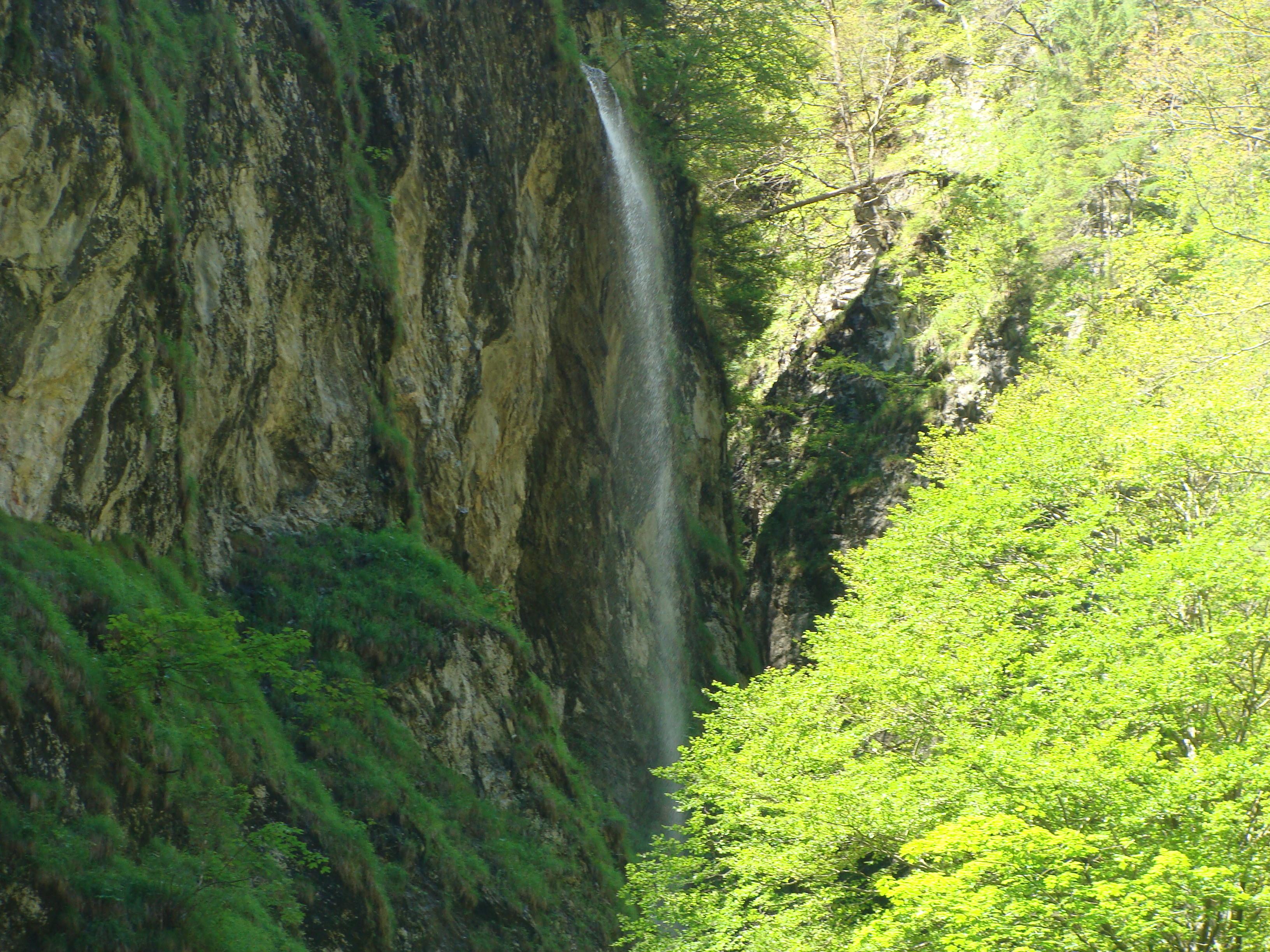 Karpaltunnelsyndrom Naturheilpraxis Heilpraktiker Kreuer in Wernau bei Stuttgart 36
