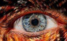 Irisdiagnose - Augendiagnose Heilpraktiker Kreuer´s Naturheilpraxis 1