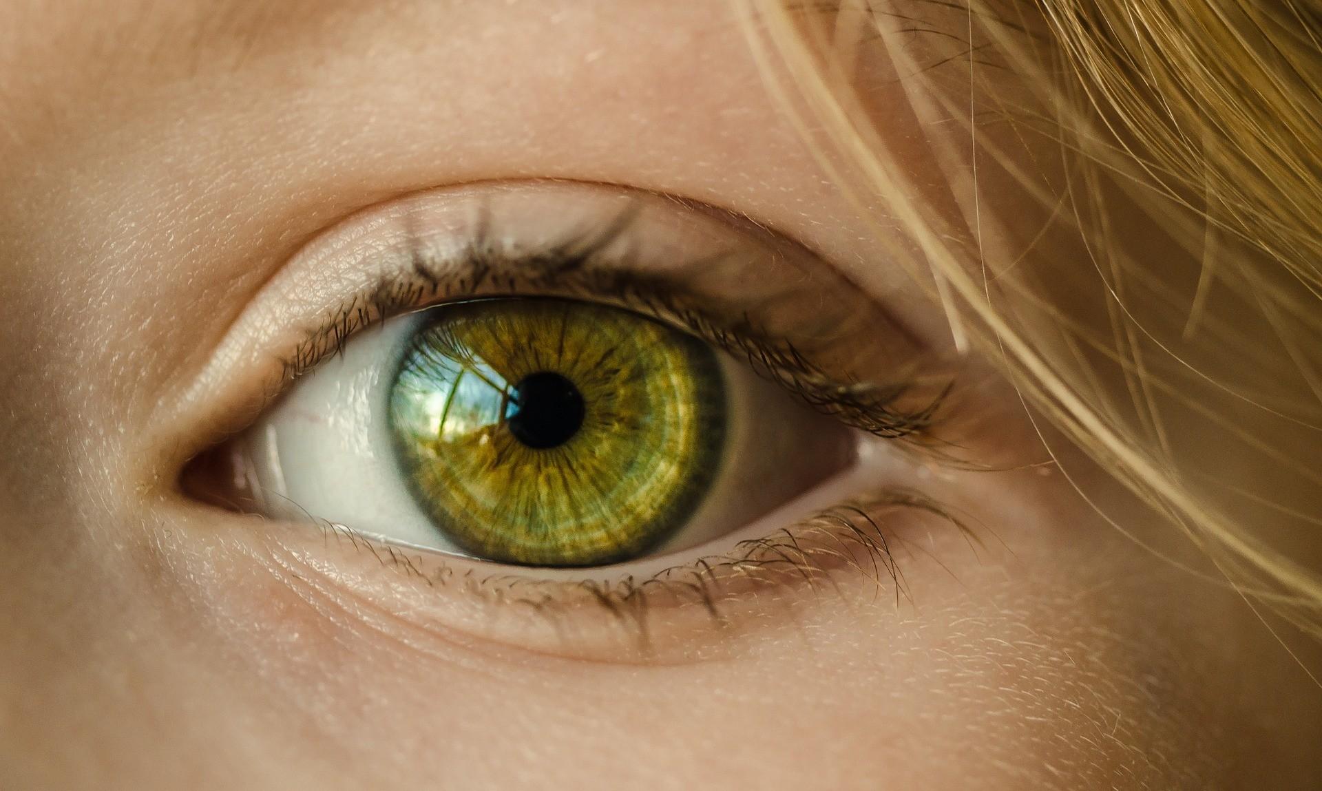 Augendiagnose – Irisdiagnose