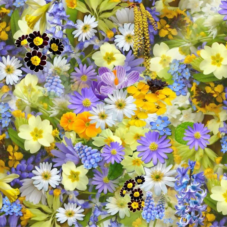 Früühlingsblumenschmuck